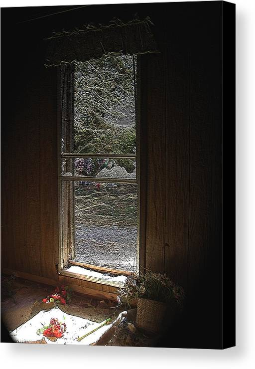 Loss Canvas Print featuring the photograph Loss by Lee M Plate