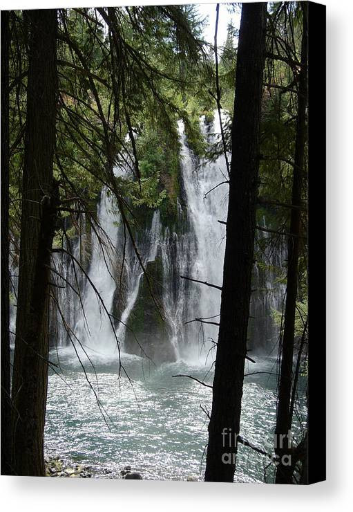 Mythical Figures Canvas Print featuring the photograph Man Of The Falls by Stephanie H Johnson