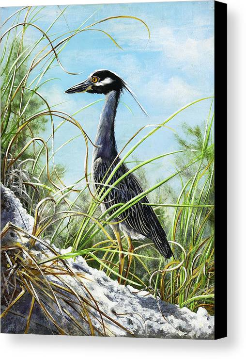 Bird Canvas Print featuring the painting Morning Hunt by Joan Garcia