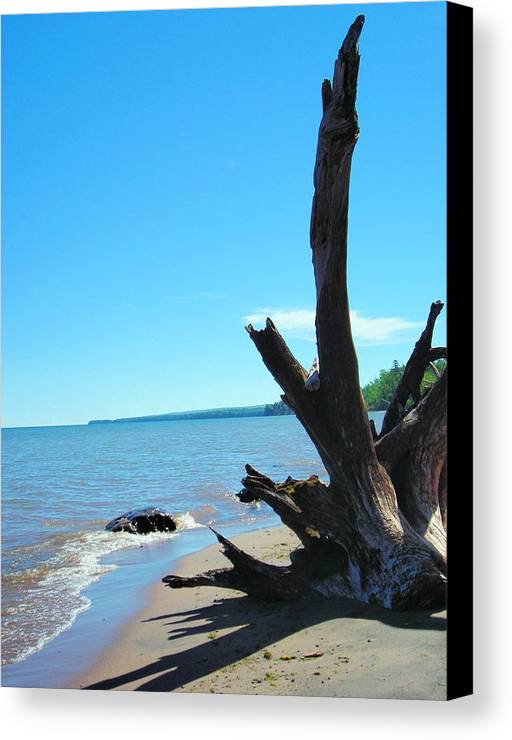 Landscape Canvas Print featuring the photograph On The Water Front by Peter Mowry