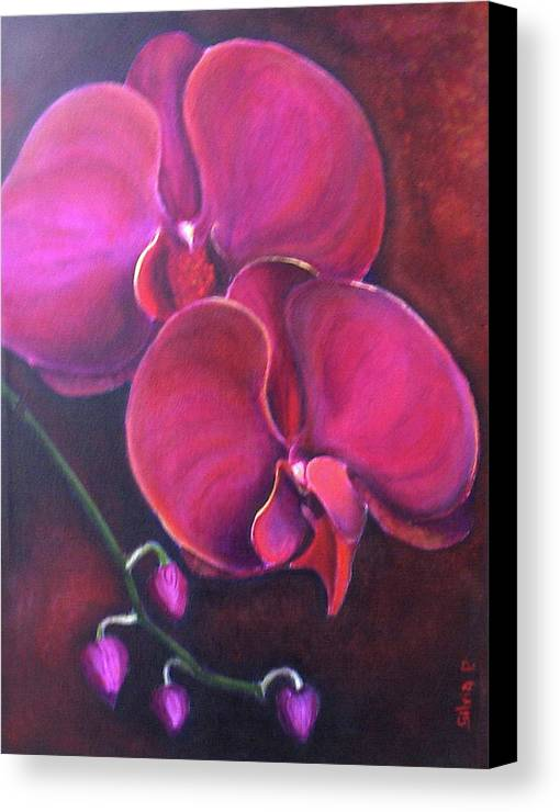 Orchid Canvas Print featuring the painting Pink Orchid by Silvia Philippsohn