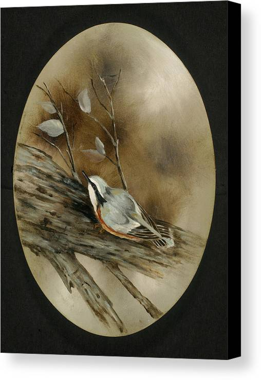 Wild Life Canvas Print featuring the painting The Nuthatch by Betty Stevens