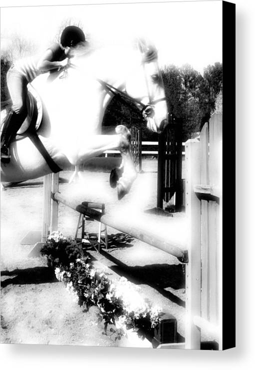 Horse Canvas Print featuring the photograph Up. Up And Away by Donna Thomas