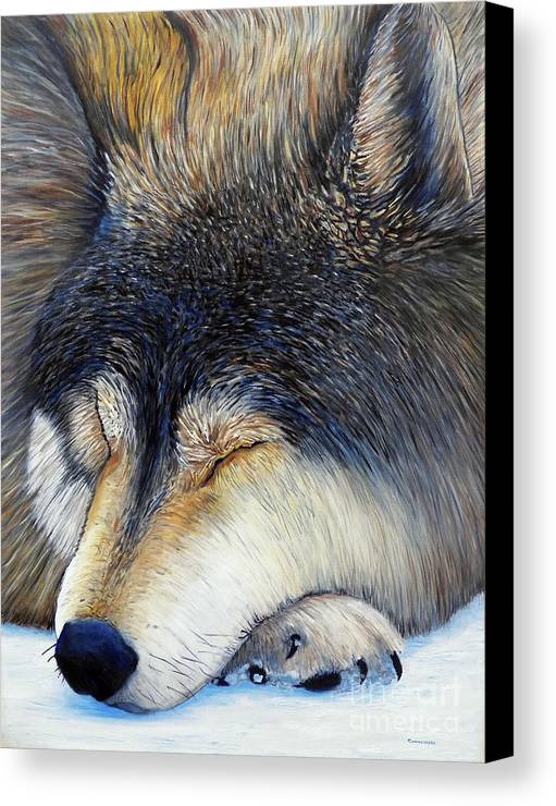Wolf Canvas Print featuring the painting Wolf Dreams by Brian Commerford