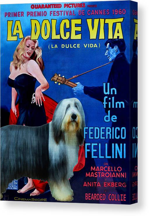 Bearded Collie Canvas Print featuring the painting Bearded Collie Art Canvas Print - La Dolce Vita Movie Poster by Sandra Sij