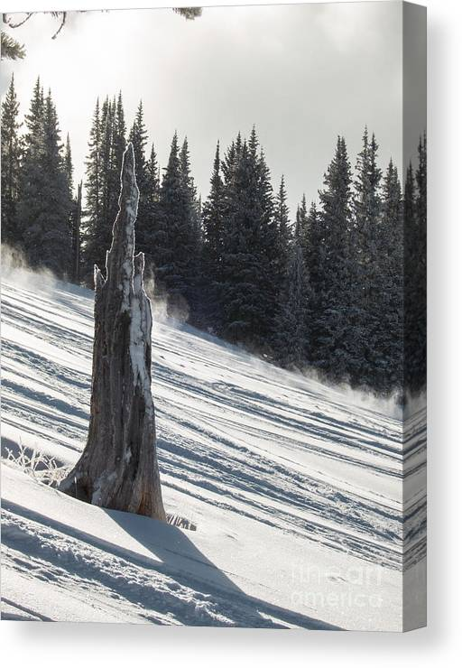 Snow Canvas Print featuring the photograph Deeply Weathered by Franz Zarda