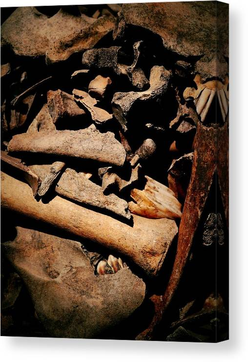 Relics Canvas Print featuring the photograph From The Bone Yard 2 by Nadalyn Larsen