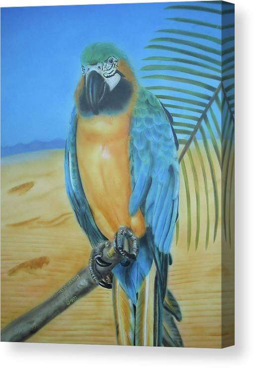 Cockatoo Canvas Print featuring the painting Macaw On A Limb by Thomas J Herring