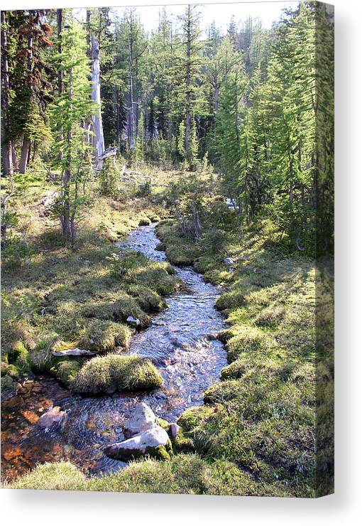 Water Canvas Print featuring the photograph Stream At Lena Peak by Pam Little