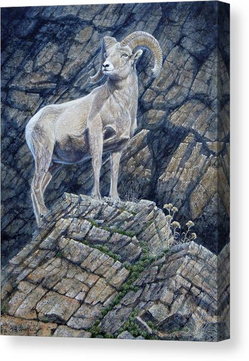 Ram Canvas Print featuring the painting The Look Out by Mike Stinnett
