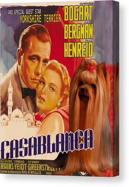 Yorkshire Terrier Canvas Print featuring the painting Yorkshire Terrier Art Canvas Print - Casablanca Movie Poster by Sandra Sij