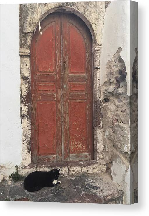 Door Canvas Print featuring the photograph Guard Cat by Leslie Brashear