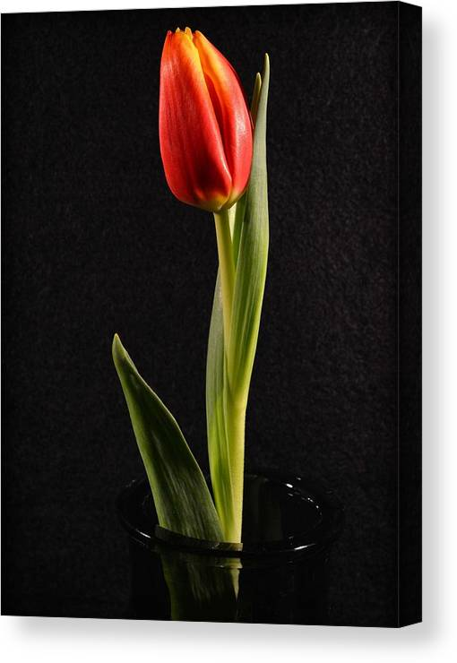 Flowers Canvas Print featuring the photograph Perfect Love by Peterson Photography