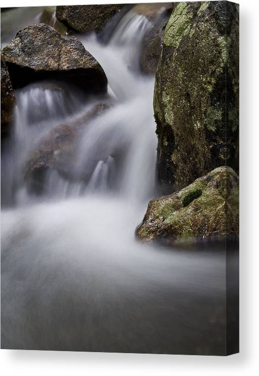 Stream Canvas Print featuring the photograph Dreamy Stream by Jim DeLillo