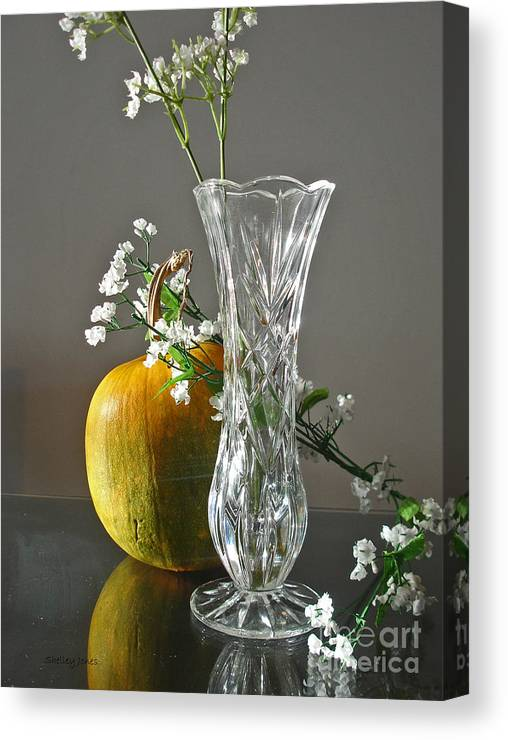 Still Life Canvas Print featuring the photograph Everlasting Harvest by Shelley Jones