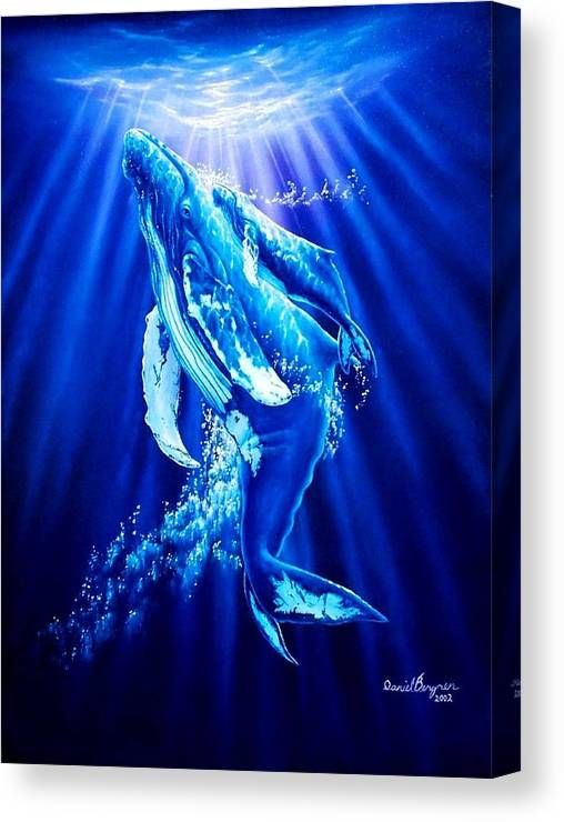 Whale Canvas Print featuring the painting First Light by Daniel Bergren