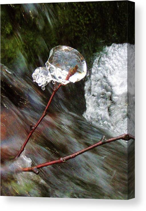 Water Canvas Print featuring the photograph Icy Ball by Jessica Dandridge