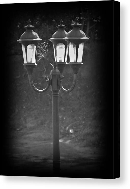 Black And White Canvas Print featuring the photograph Lamppost by Steve Cochran