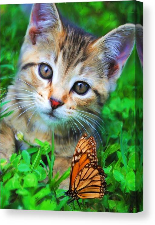 Kitten Canvas Print featuring the painting Me And My Monarch by Jai Johnson