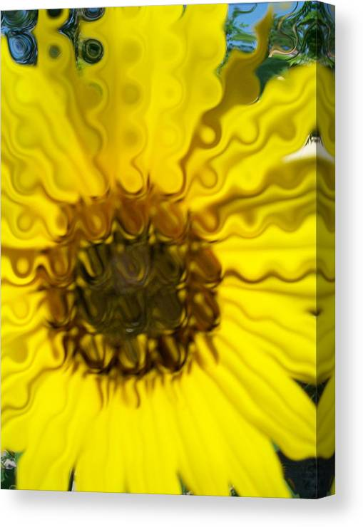 Yellow Prints Canvas Print featuring the photograph Melting Sunflower by Laurette Escobar