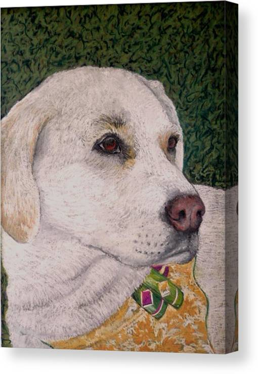 Dog Canvas Print featuring the painting Sara by David Horning