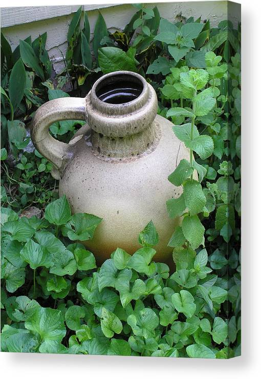 Jug Canvas Print featuring the photograph The Old Jug by Jeanette Oberholtzer
