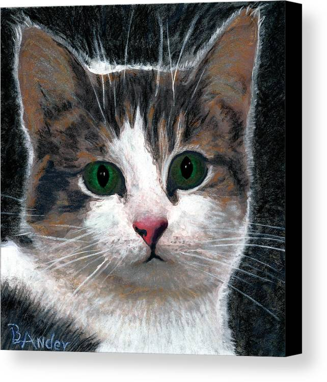 American Shorthair Canvas Print featuring the drawing Are You Talking To Me by Brent Ander