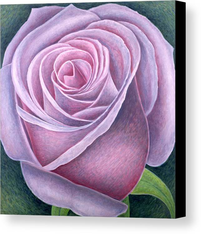 Still Lives Of Flowers Canvas Print featuring the painting Big Rose by Ruth Addinall