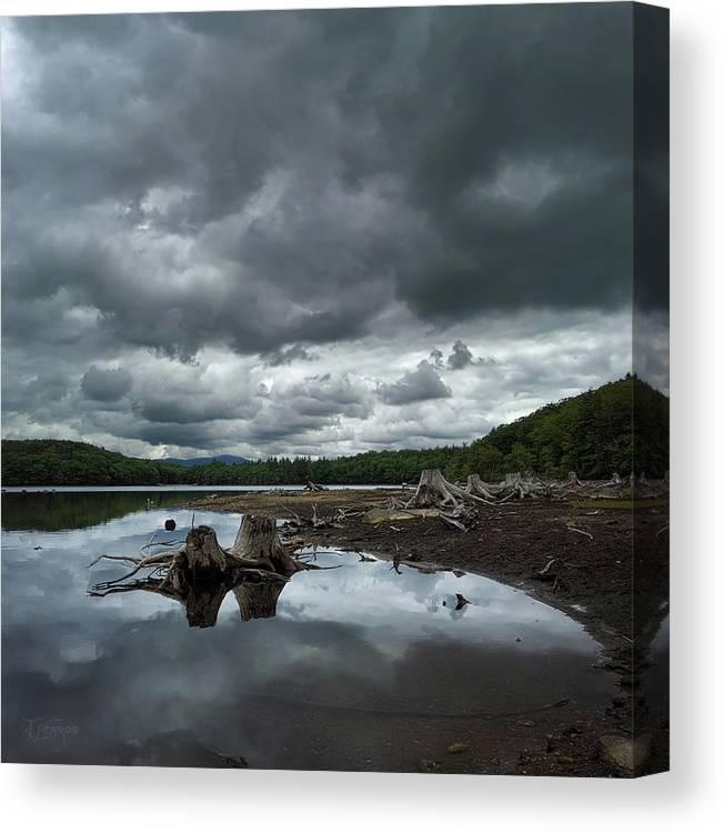 Reservoir Canvas Print featuring the photograph Reservoir Logs by Jerry LoFaro