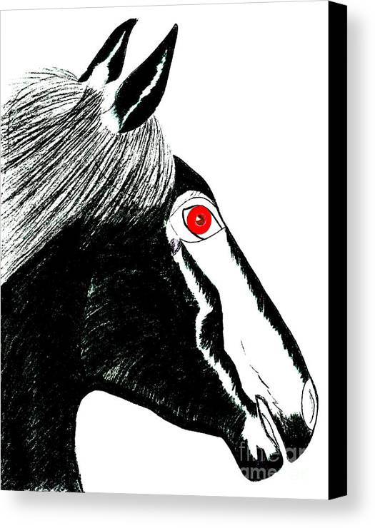 Horses Canvas Print featuring the painting Darwin by Tess M J Iroldi