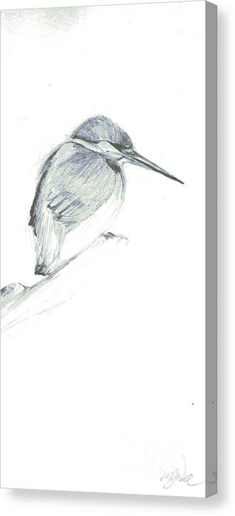 A Kingfisher Waiting For Prey- Pencil Drawing Canvas Print featuring the drawing Still by Mui-Joo Wee