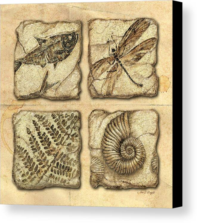 Jon Q Wright Canvas Print featuring the painting Fossils by JQ Licensing