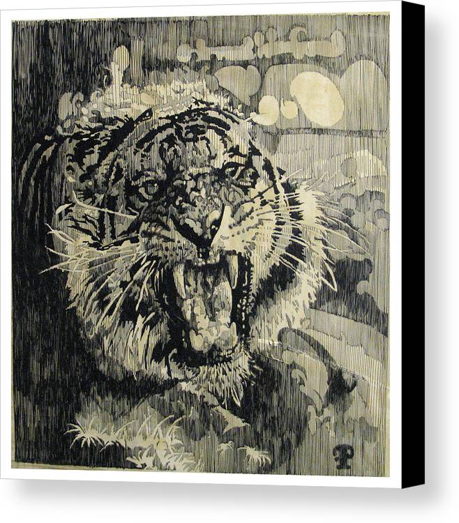 Animal Canvas Print featuring the drawing Tiger by Frank Papandrea