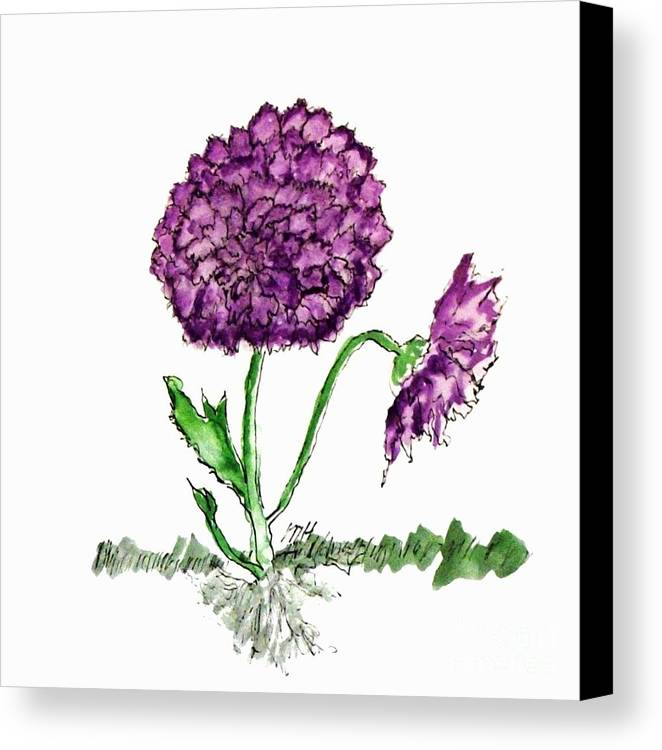 Mixed Media Canvas Print featuring the mixed media Purple Chrysanthamums by Marsha Heiken
