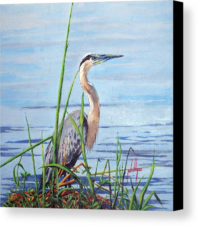 Heron Canvas Print featuring the painting Blue Heron by Jim Phillips