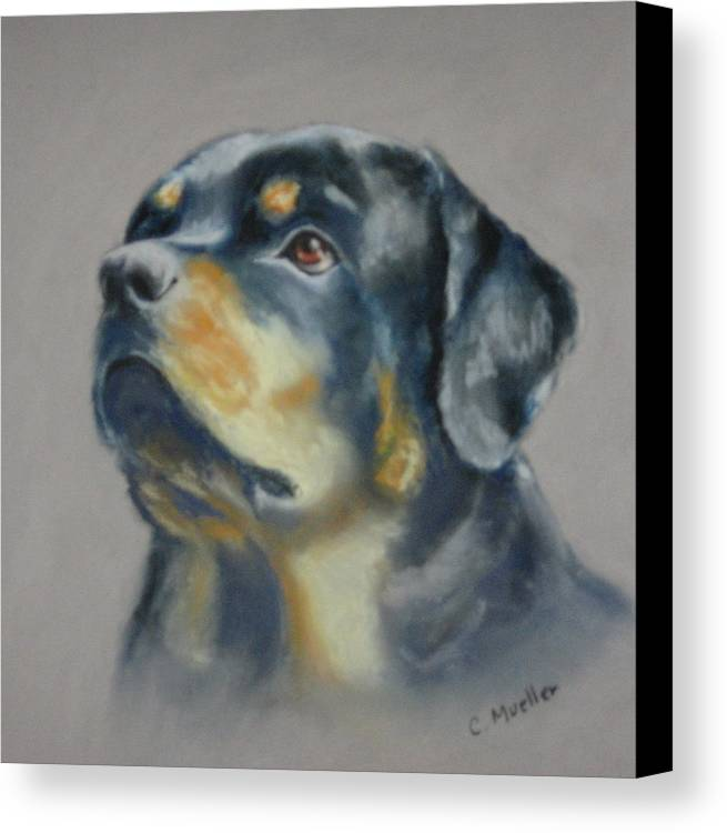 Dog Canvas Print featuring the painting Lars by Carol Mueller