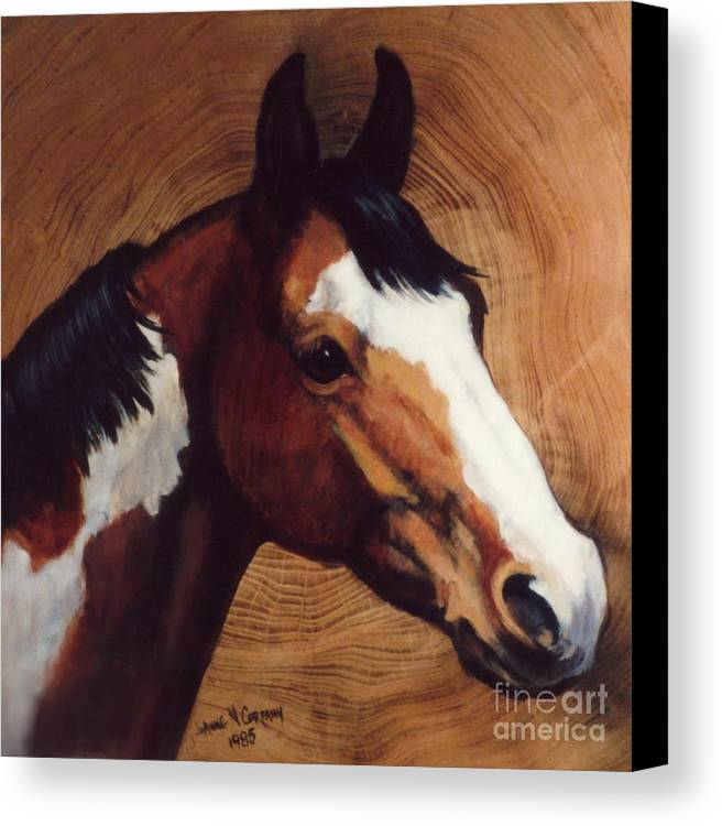 Fancy Canvas Print featuring the painting Tingeys Fancy  Paint Horse by JoAnne Corpany