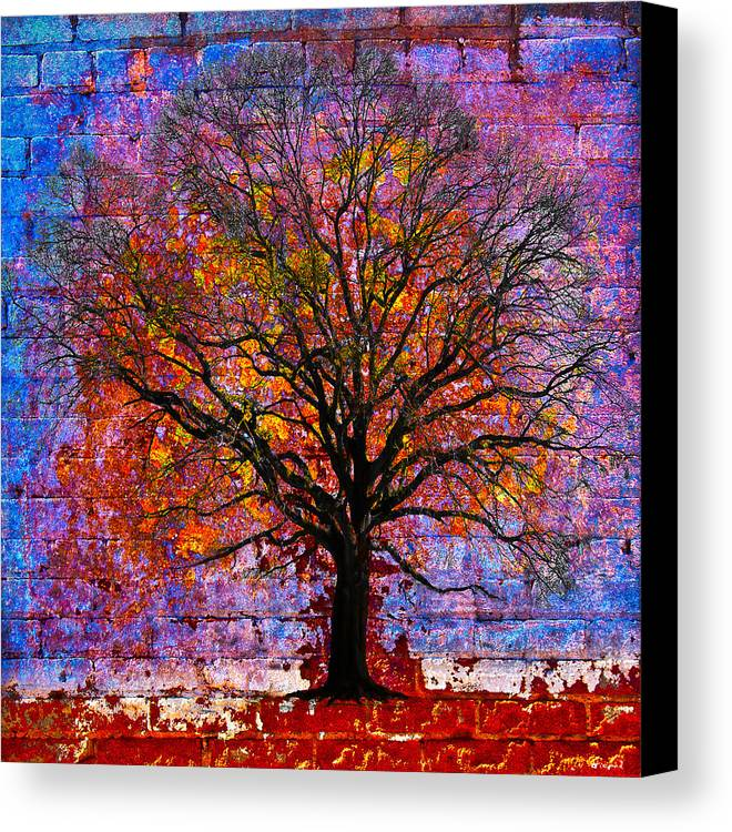 Tree Canvas Print featuring the photograph Tree Of Life by David Clanton