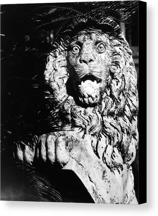 Lion Canvas Print featuring the photograph King Of The Concrete Jungle by Allan McConnell