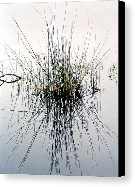 Landscape Canvas Print featuring the photograph Morning Reflection by Cindy Gregg
