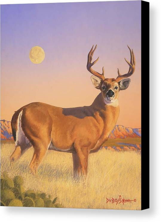 Deer Canvas Print featuring the painting The Stag by Howard Dubois