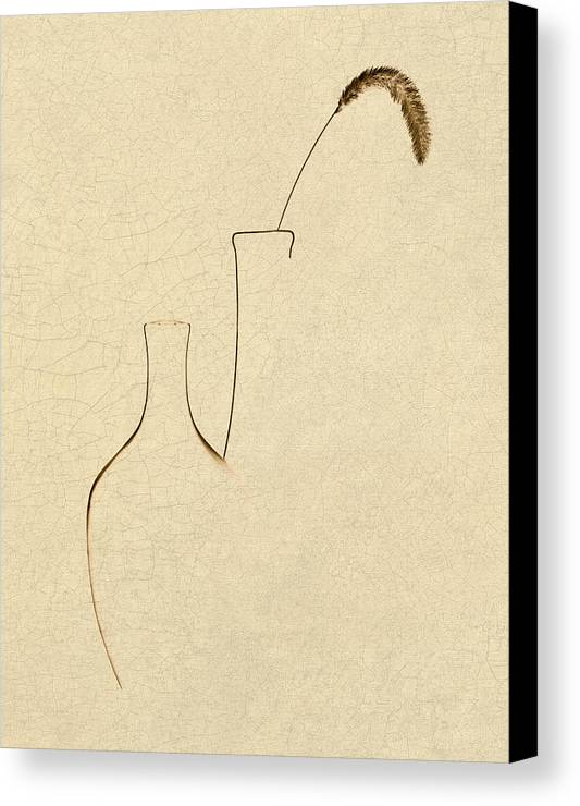 Foxtail Canvas Print featuring the photograph Yellow Foxtail With Vases by Tom Mc Nemar