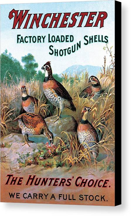Quail Canvas Print featuring the painting The Hunters Choice by Unknown