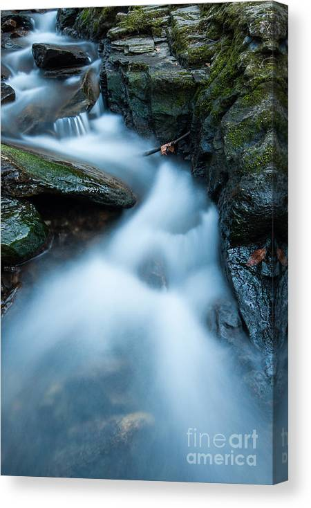 Connecticut Canvas Print featuring the photograph Cascades - Spruce Brook Twilight by JG Coleman