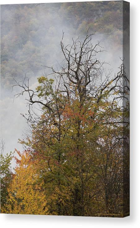 Autumn Canvas Print featuring the photograph Autumn3 by Luigi Barbano BARBANO LLC