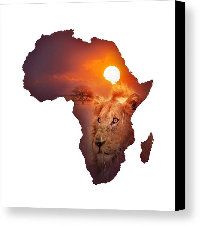 Africa Canvas Print featuring the photograph African Wildlife Map by Johan Swanepoel