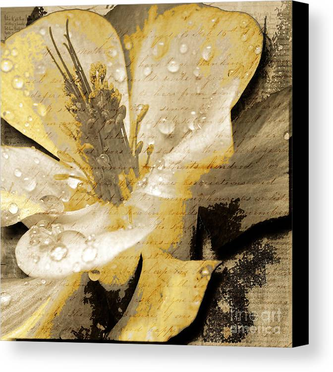 Canvas Print featuring the mixed media Beauty Iv by Yanni Theodorou