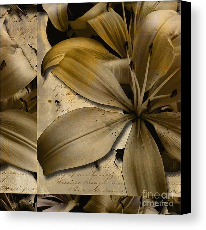 Canvas Print featuring the mixed media Bliss II by Yanni Theodorou