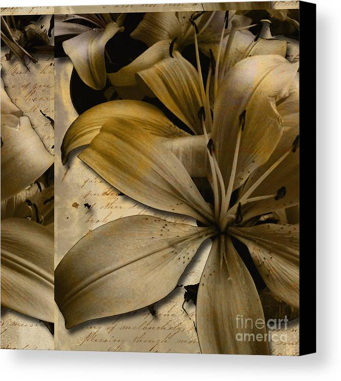 Canvas Print featuring the mixed media Bliss IIi by Yanni Theodorou