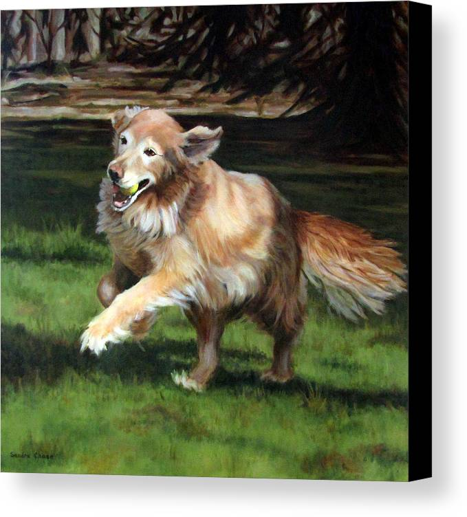 Dog Canvas Print featuring the painting Golden Days by Sandra Chase